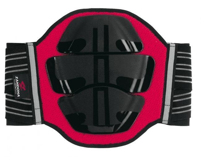 Zandona zaščita za ledveni del, 3 plošče