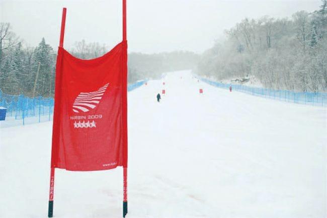 Liski zastavice za smuk (75X100cm) - FIS competition